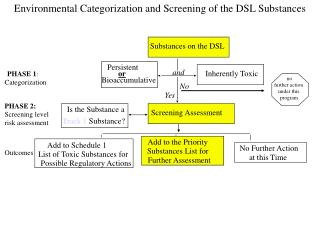 Environmental Categorization and Screening of the DSL Substances