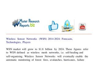 Wireless Sensor Networks (WSN) 2014-2024: Forecasts, Technol