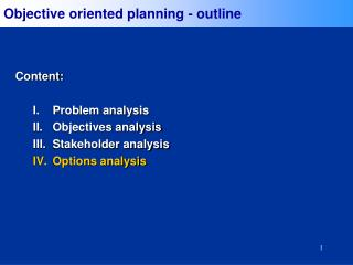 Objective oriented planning - outline