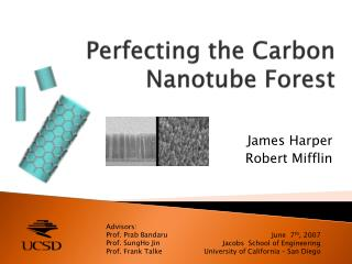 Perfecting the Carbon  Nanotube  Forest