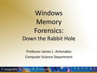 Windows Memory Forensics: Down the Rabbit Hole