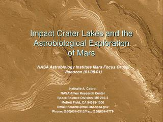 Impact Crater Lakes and the Astrobiological Exploration  of Mars