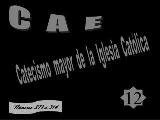 C  A  E