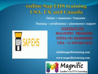online Sap EHS training USA, UK and Canada