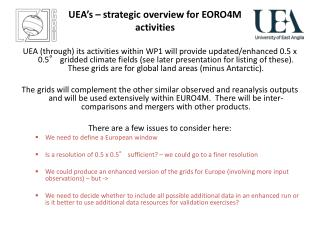 UEA's – strategic overview for EORO4M activities