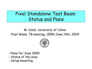 Pixel Standalone Test Beam: Status and Plans