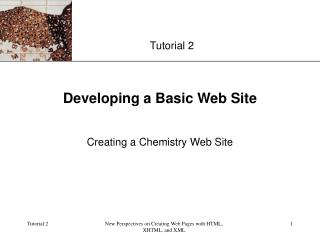 Developing a Basic Web Site