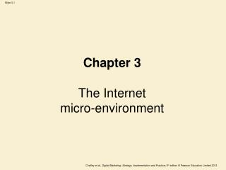 Chapter 3 The Internet  micro-environment