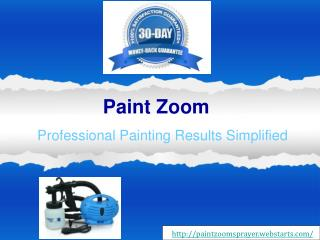 Buy the Paint Zoom and Achieve Professional Painting Results