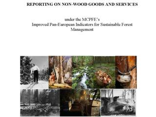 Definition for Non-Timber Forest Products