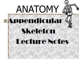 Appendicular              Skeleton        Lecture Notes