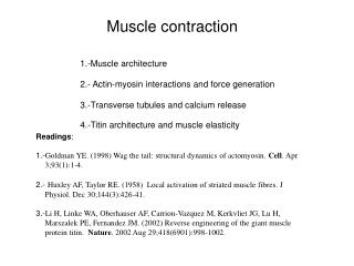 1.-Muscle architecture