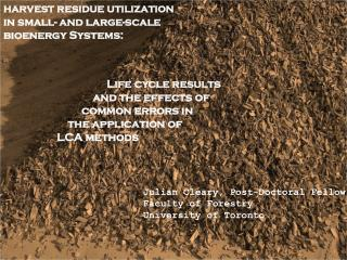 harvest residue utilization in small- and large-scale bioenergy Systems: