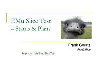 EMu Slice Test  – Status & Plans
