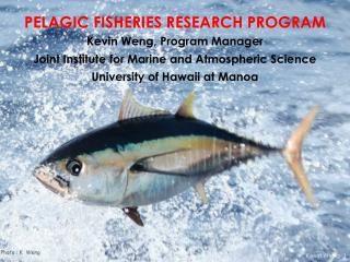 PELAGIC FISHERIES RESEARCH PROGRAM