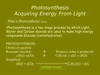 Photosynthesis Acquiring Energy From Light