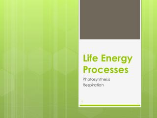 Life Energy Processes