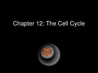 Chapter 12: The Cell Cycle