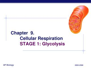 Chapter  9. 	Cellular Respiration 	STAGE 1: Glycolysis