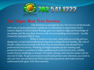 Tree service Las Vegas Nevada, Tree removal Las Vegas Nevada