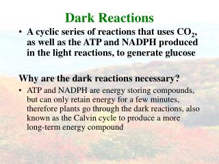 Dark Reactions