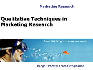 Qualitative Techniques in Marketing Research