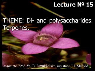 THEME: Di- and p olysaccharides .  Terpenes .