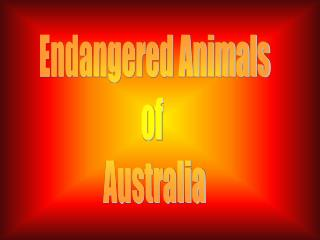 Endangered Animals of  Australia
