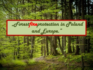 """""""Forest fire protection in Poland and Europe."""""""