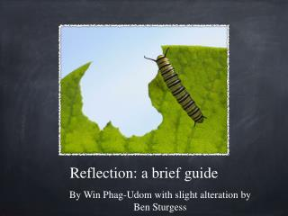 Reflection: a brief guide