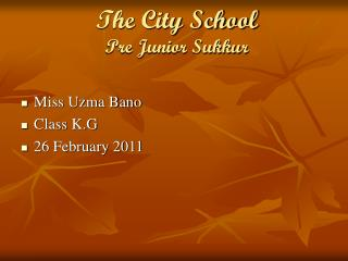 The City School Pre Junior Sukkur