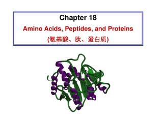 Chapter 18 Amino Acids, Peptides, and Proteins ( 氨基酸、肽、蛋白质 )