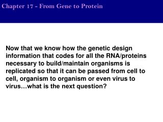 Chapter 17 - From Gene to Protein