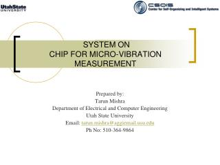SYSTEM ON CHIP FOR MICRO-VIBRATION MEASUREMENT