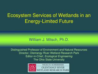 Ecosystem Services of Wetlands in an Energy-Limited Future