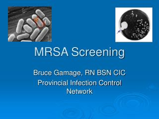 MRSA Screening