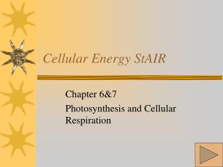 Cellular Energy StAIR