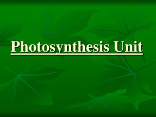 Photosynthesis Unit