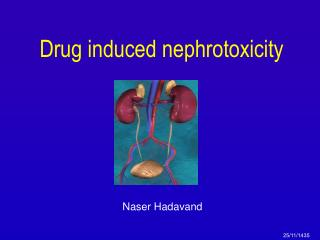 Drug induced nephrotoxicity