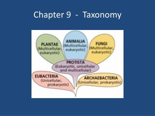 Chapter 9  -  Taxonomy