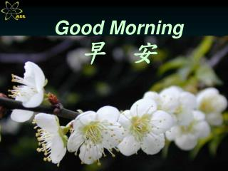Good Morning 早  安