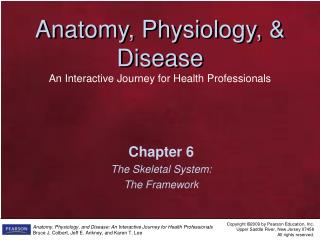 Chapter 6 The Skeletal System: The Framework