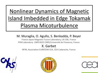 Nonlinear Dynamics of Magnetic Island Imbedded in Edge Tokamak Plasma Micoturbulence