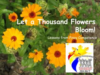 Let a Thousand Flowers Bloom!