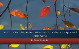 Pervasive Developmental Disorder-Not Otherwise Specified (PDD-NOS )