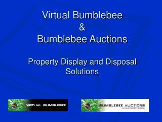 Virtual Bumblebee & Bumblebee Auctions Property Display and Disposal Solutions