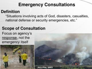 Emergency Consultations