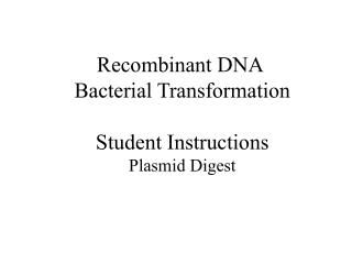 Recombinant DNA  Bacterial Transformation Student Instructions Plasmid Digest
