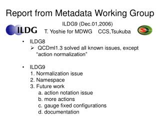 Report from Metadata Working Group