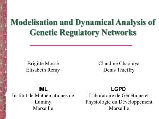 Modelisation and Dynamical Analysis of Genetic Regulatory Networks